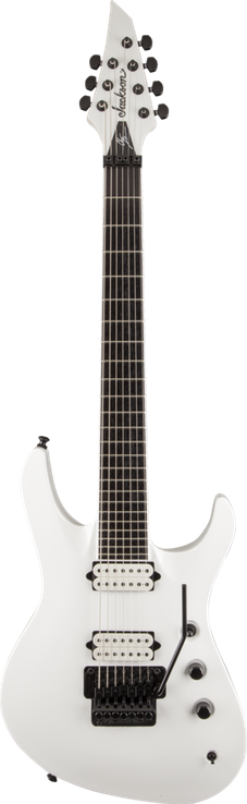 Pro Series Signature Chris Broderick Soloist™ 7